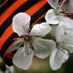 О памятных датах и народной памяти