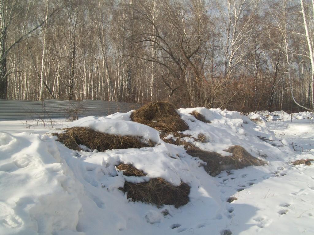 Уборка снега в поселке Краснообск